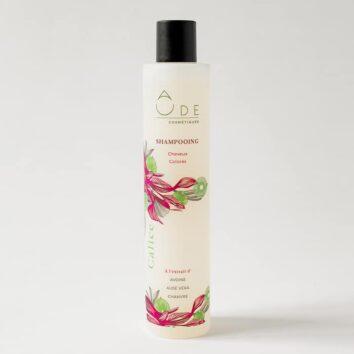shampooing naturel pour cheveux colorés