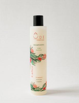 shampooing naturel pour usage quotidien